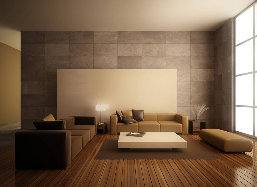 Some ideas how to decorate a minimalist living room homedizz for How to decorate room
